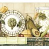 wallpaper-borders-for-kitchen-Sunworthy-9-Bountiful-Shelf-Prepasted-Wallpaper-Border-at-Lowes
