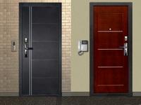Как правильно выбрать входную дверь?